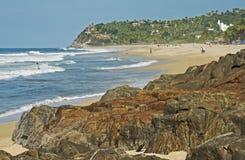 偏僻的太平洋海滩 免版税图库摄影
