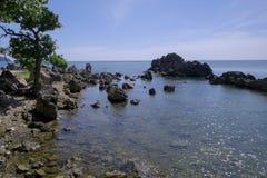 偏僻的树和海看法省chanthaburi的 免版税库存照片