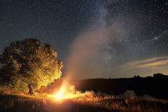 偏僻的树和篝火在晚上 免版税库存照片
