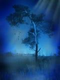 偏僻的树 免版税库存照片