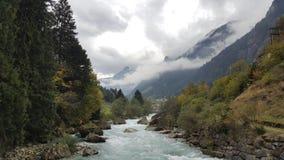 偏僻的河在森林 库存图片