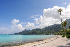 偏僻的海滩在Moorea 免版税库存照片