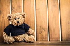 偏僻的熊玩偶 库存照片