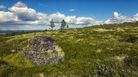 偏僻的石头在寒带草原。科拉半岛 免版税库存图片