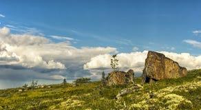 偏僻的石头在寒带草原。科拉半岛 免版税图库摄影