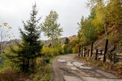偏僻的道路在秋天森林里 图库摄影