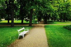 偏僻的长凳在一个美妙的公园 免版税库存照片