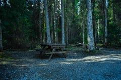 偏僻的长凳 免版税图库摄影