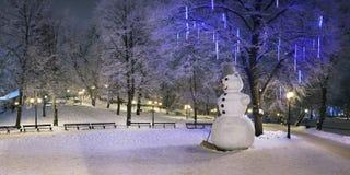 偏僻的雪人在冬天夜 免版税库存图片