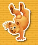 做一的北美灰熊handstanding 皇族释放例证