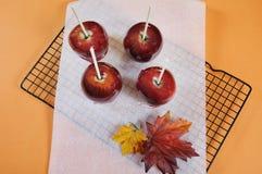 做万圣夜把戏或款待食物糖果的红色奶糖苹果 库存图片