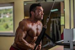 做三头肌的爱好健美者重量级的锻炼与缆绳 免版税库存图片
