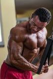 做三头肌的爱好健美者重量级的锻炼与缆绳 免版税库存照片