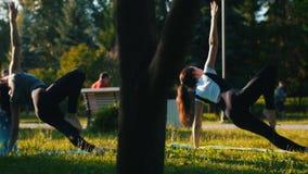做与一个人的两名年轻可爱的妇女groop瑜伽锻炼在公园-一名妇女有长的蓝色dreadlocks 股票视频