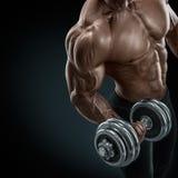 做与哑铃的坚强和力量爱好健美者锻炼 免版税图库摄影