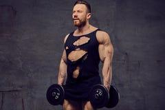 做与哑铃的肌肉,有胡子的男性二头肌锻炼 图库摄影