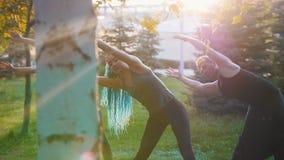做与教练员的两年轻女人瑜伽锻炼在公园在阳光下-一名妇女有长的蓝色dreadlocks 影视素材