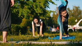 做与辅导员的两年轻女人瑜伽锻炼在公园-一名妇女有长的蓝色dreadlocks 影视素材