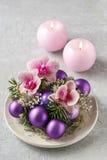 做与紫罗兰色球,冷杉的妇女圣诞节装饰和或 图库摄影