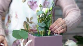做与eustomas、风信花、牡丹牡丹和玉树叶子的围裙的卖花人花构成 股票视频