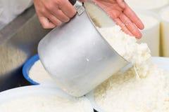 做乳酪的工艺 免版税库存照片