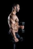做二头肌的人在健身房卷曲 免版税图库摄影