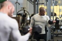 做二头肌的年轻健康人锻炼 免版税库存图片