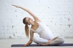 做产前瑜伽的怀孕的少妇 容易的岗位的变异 库存图片