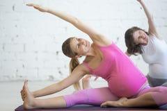做产前瑜伽的怀孕的少妇 弯曲在Janu Sirsas 库存照片