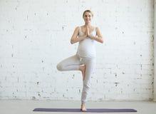 做产前瑜伽的怀孕的少妇 树姿势 库存照片