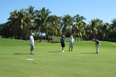 做他的与双打的男性高尔夫球运动员轻轻一击 库存图片