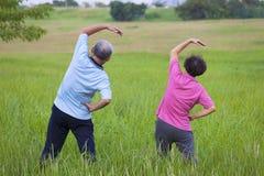 做体操的资深夫妇在公园 健康的概念 免版税库存照片