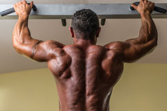 做后面的男性爱好健美者重量级的锻炼 免版税图库摄影