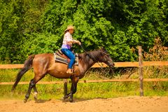 做在乡下草甸的女牛仔马骑术 免版税库存图片