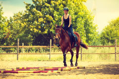 做在乡下草甸的骑师女孩马骑术 免版税图库摄影