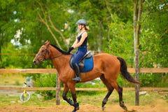 做在乡下草甸的骑师女孩马骑术 免版税库存照片