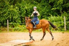 做在乡下草甸的骑师女孩马骑术 库存照片