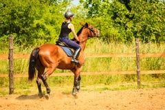 做在乡下草甸的骑师女孩马骑术 库存图片