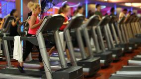 做在健身房的人们体育 股票视频