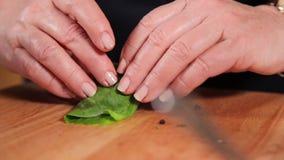做在加调料的口利左香肠、苹果和圆白菜外面的一个盘 影视素材
