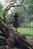 做在树的女孩瑜伽 库存图片