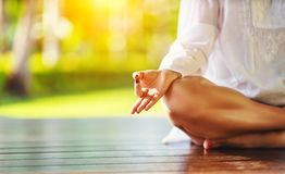 做在自然的妇女的手瑜伽在公园 免版税库存照片