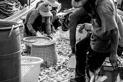 做在Aoudom港口chonburi的渔夫 泰国 库存图片