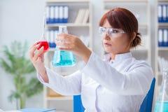 做在labora的女性科学家研究员一次试验 图库摄影