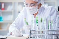 做在labora的女性科学家研究员一次试验 免版税图库摄影