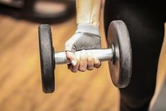 做她的锻炼的健身房的一个女孩拿着举的重量 免版税库存照片