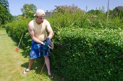 做完善的形状家庭树篱 免版税库存照片