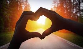 做心脏形状的播种的手 免版税库存照片