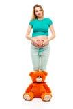 做心脏的白色背景的怀孕的少妇在它的胃,在她的腿附近的一头软的玩具熊 微笑,愉快 的treadled 免版税库存图片
