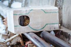 做房子的人们从一只无家可归的猫的一个箱子 免版税库存图片